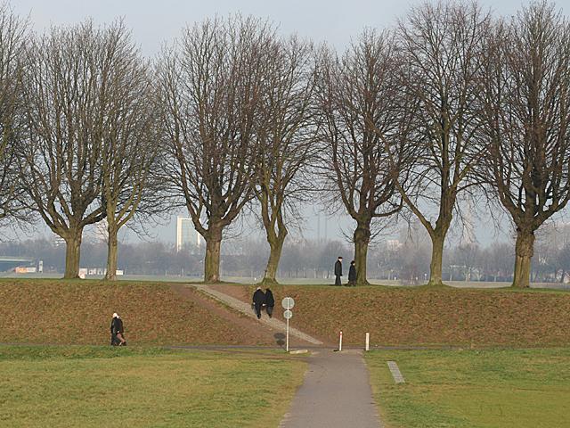 Rheinufer 5